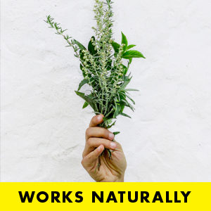 Plastic Free natural deodorant UK   Moon Goo   Aluminium Free   Cruelty Free   Awake Organics   herbal