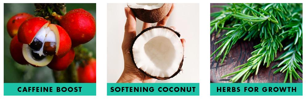 Plastic-free-shampoo-water-activated-awake-organics-coconut-rosemary